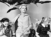 Scene from Hitchcock's film The Birds